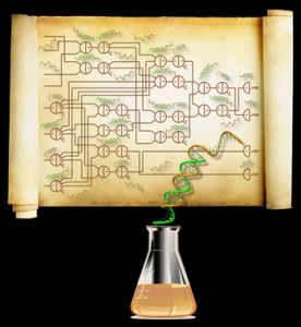 Taking a Square Root With DNA [image courtesy Caltech]