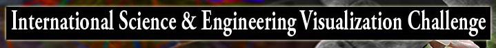 International Science & Engineering Visualization Challenge [image courtesy NSF].