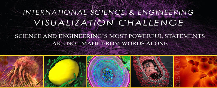 International Science & Engineering Visualization Challenge [image courtesy NSF].
